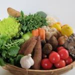 画像秋冬野菜イメージ