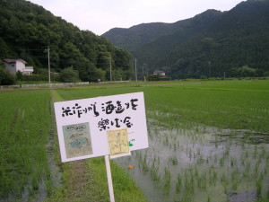 ②小川町田んぼ