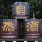 3 仁井田本家
